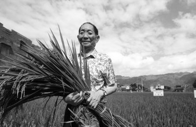 Tribute to a rice scientist